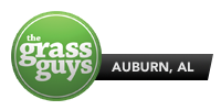 Grass Guys – Auburn, Alabama Lawncare & Landscaping
